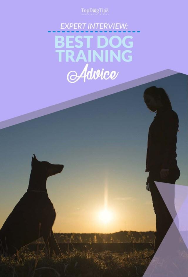Dog Training Tips From Dr Roger Mugford
