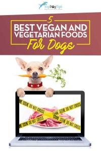 Top Best Vegetarian and Best Vegan Dog Food