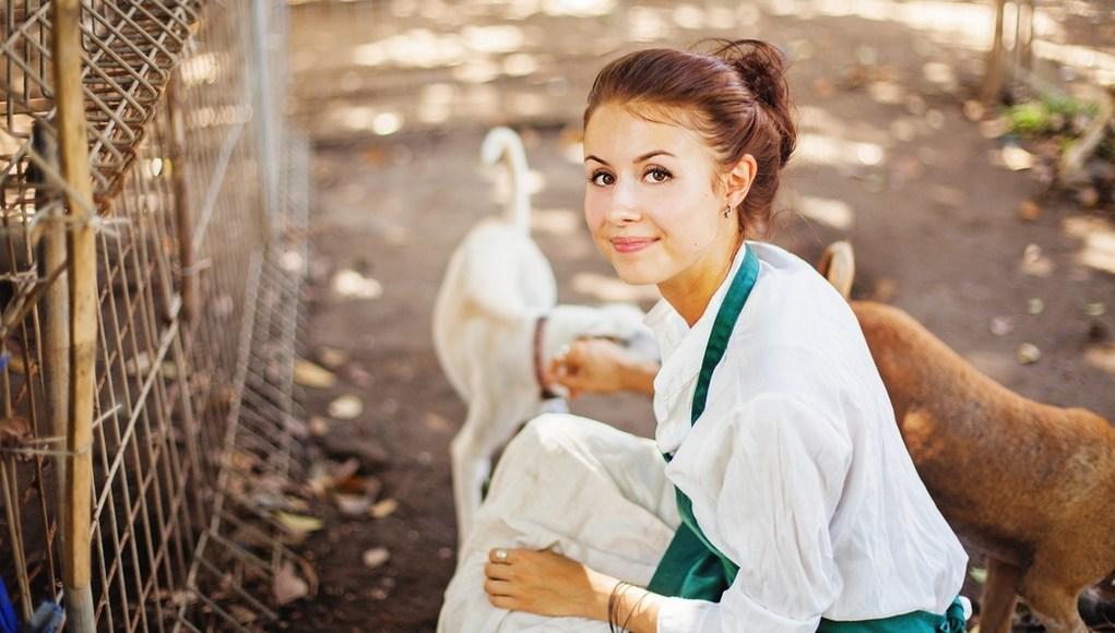 volunteering to help dogs