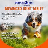 Doggone Best Supplements for Dogs Review