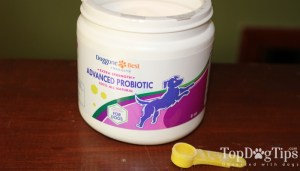 Doggone Best Supplements for Dogs