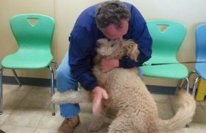 Lion Dog Reunited With Owner After Legal Debacle