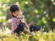 Small Dog Breeds That Are Good With Kids