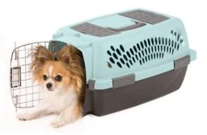 Aspen Pet Porter Plastic Kennel