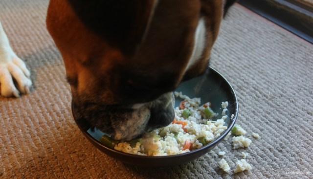 Chicken, Rice and Vegetable Homemade Dog Food