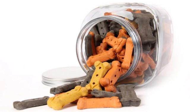 Best Dog Treat Jar for Pet Treats