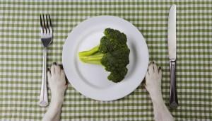 Risks of the vegan diet for dogs