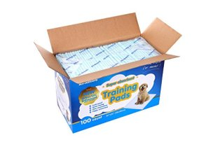 All Absorb Puppy Training Pads