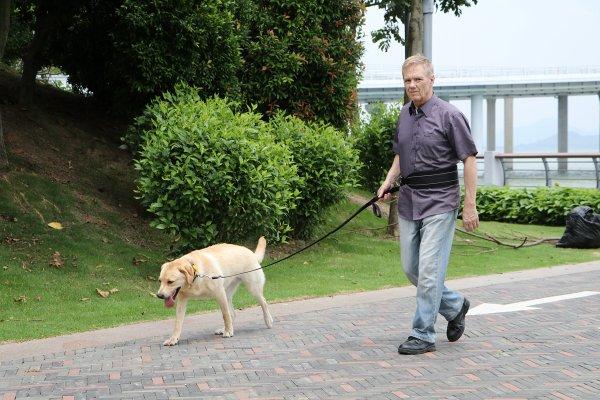 MIU PET EzyDog Free Dog Supplies Giveaway
