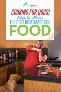 How To Make Homemade Dog Food Video