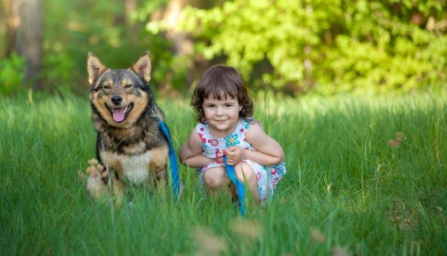 How To Teach Kids To Behave Around Dogs