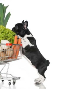 Supermarket dog supplies for new puppies