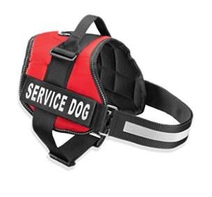 best service dog vests