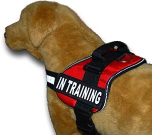 Doggie Stylz Service Dog Harness Vest