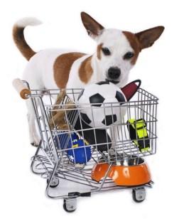 Dog Supplies Deals