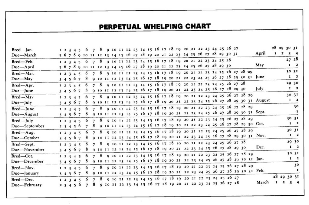 Dog whelping chart