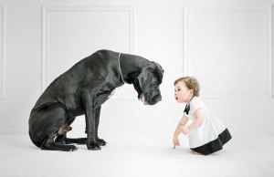 How To Train A Dog To Behave Around Kids Guide