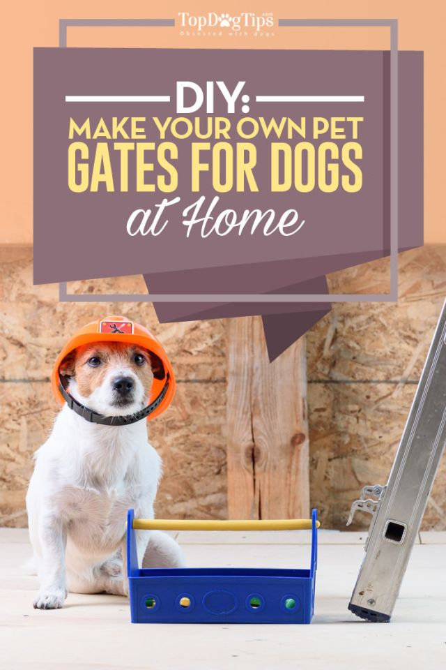How to Make a Dog Gate at Home