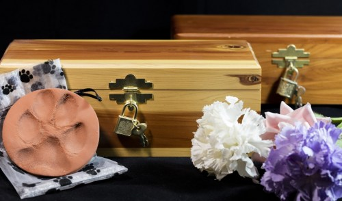 Dog Cremation Step by Step Guide