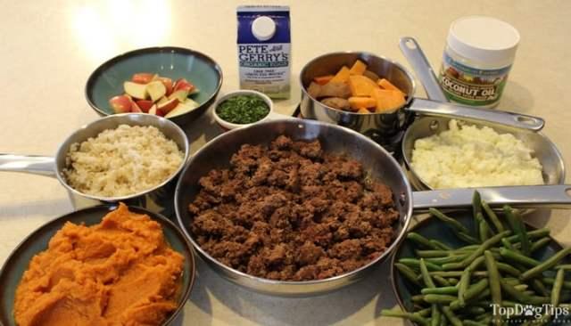 homemade dog food for kidney disease