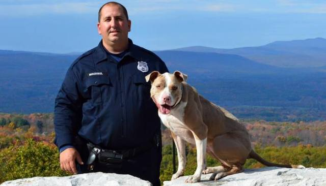 Abused and Abandoned Pit Bull Becomes New York's First Police Dog