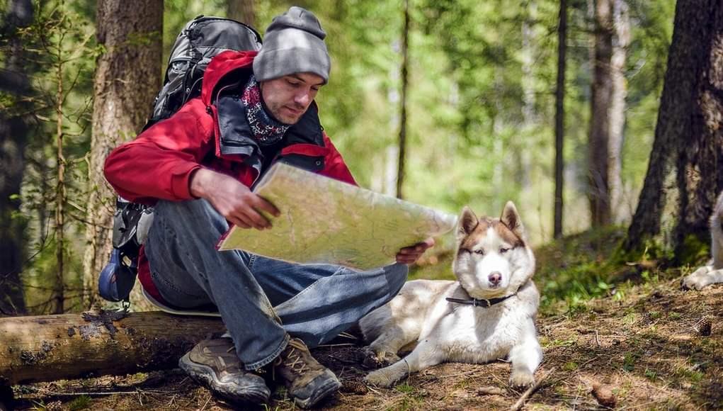 Dog Hiking Gear Guide
