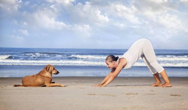Health Benefits of Doga