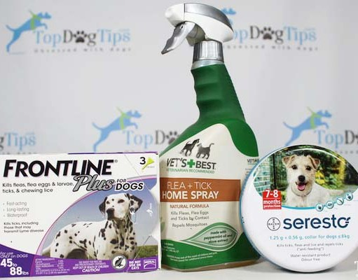 Best Flea and Tick Treatment for Dogs Review