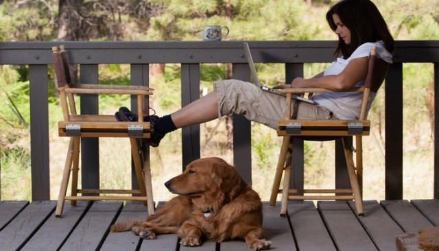 Best Sites and Resources for Pet Bloggers and Petpreneurs