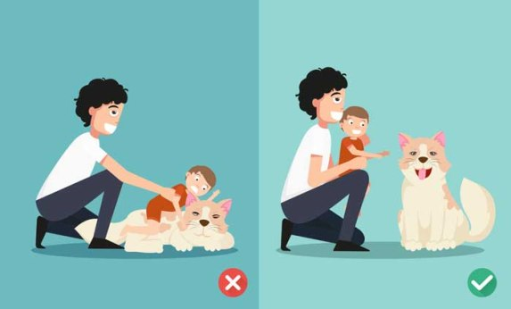 Dog and kid - right and wrong