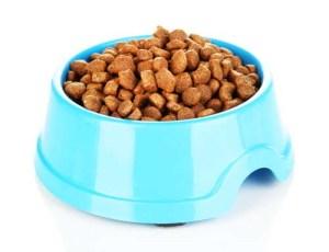 Plastic dog food bowl