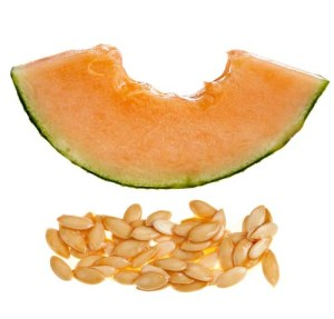 Cantaloupe seeds are dangerous to dogs