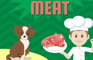 Infographic - Ensure Your Dog Gets Plenty of GOOD Meat