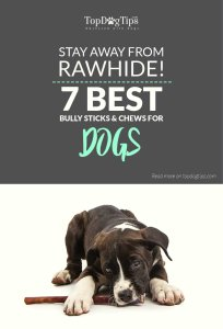 Top Best Dog Bully Sticks & Chews