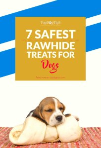 Top Best Dog Rawhide Treats