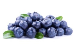 Are blueberries for dogs healthy