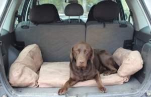 Backseet Barker Dog Bed Review