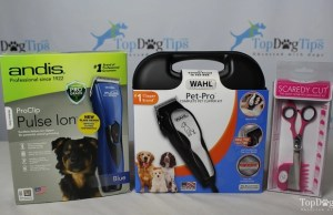 Best Dog Clippers