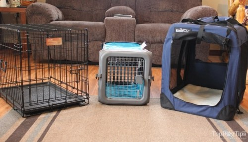What Is the Best Type of Crate for Dogs?