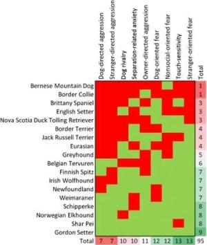 Dataset among most aggressive dog breeds