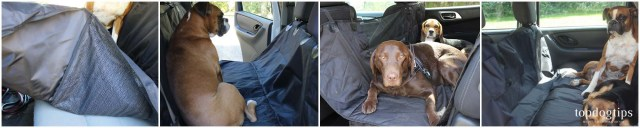 How to Pick the Best Dog Car Hammock