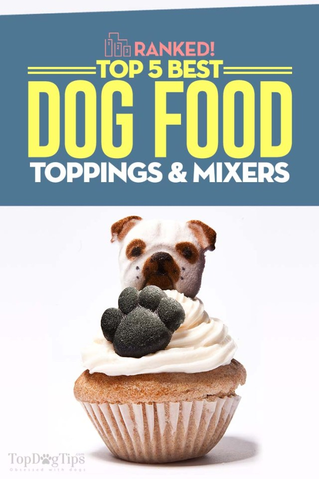 The 5 Best Dog Food Toppings and Mixers for Your Pets Food