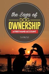 The Saga of Dog Ownership