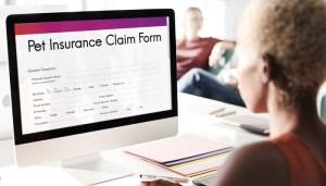 Filing Pet Insurance Claims