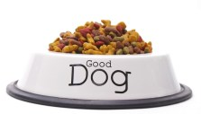 Commercial Dog Food Brands