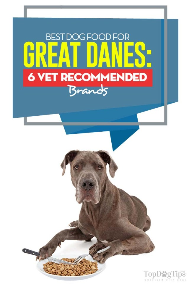 Top Rated Best Dog Food for Great Danes
