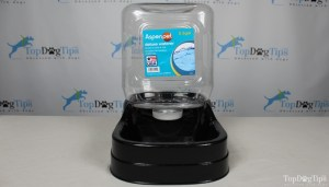 Aspenpet Gravity Waterer for Dogs The best dog water fountain for traveling