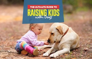 A Guide for Raising Kids with Dogs