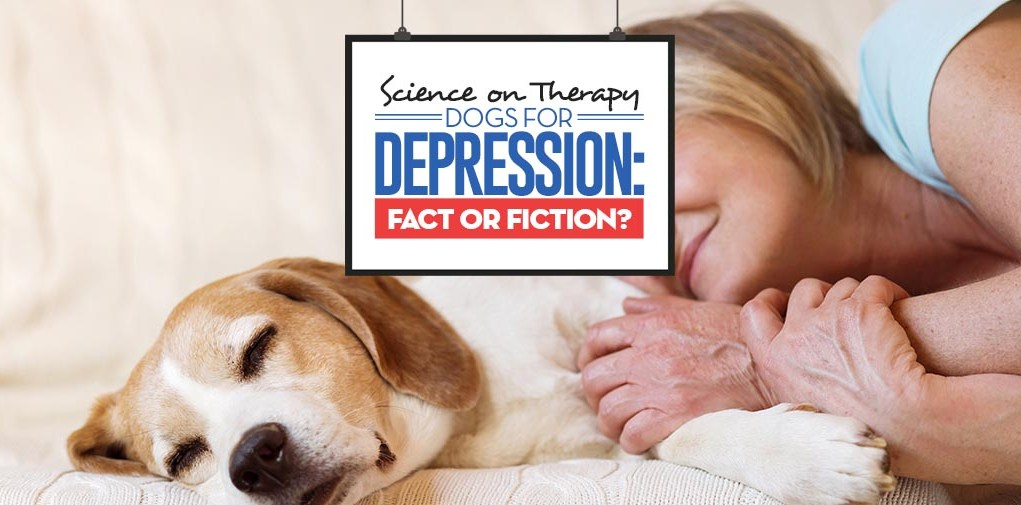 The Science Guide on Therapy Dogs for Depression