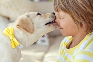 The Ultimate Guide for Raising Kids with Dogs